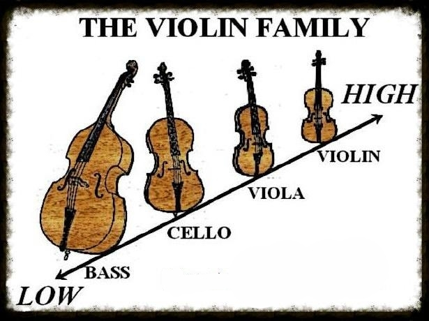 an introduction to viola an instrument from the violin family Kids learn about the violin family of musical string instruments how they work, history, and styles of music.